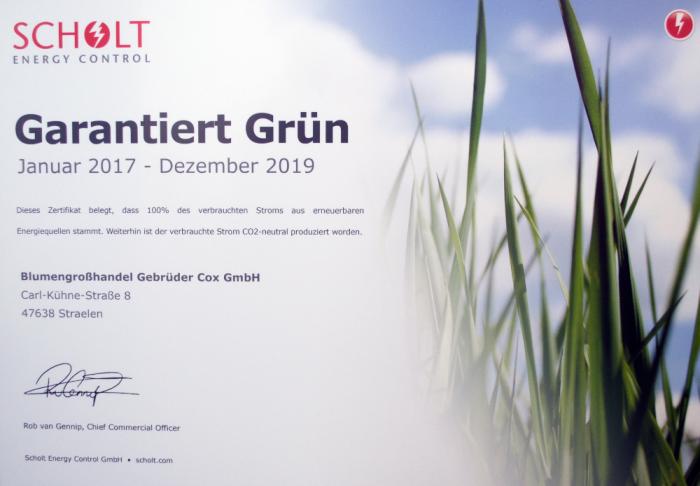 gruenstrom-zertifikat_1000x712